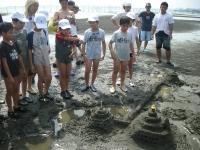 組で作った砂芸術